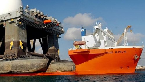 blue marlin dockwise